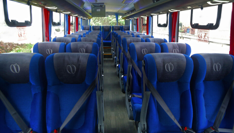 asientos-soft-3